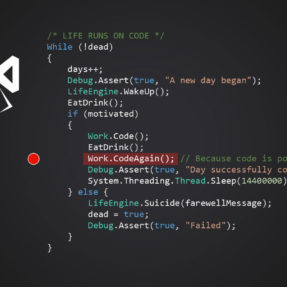 Programador .NET